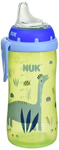 NUK Active Sippy Cup