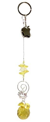 Teacher Appreciation Gift - Suncatcher with Dangling Apple and Special Teacher - Sun Catcher Gift Bundle ()
