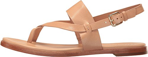footlocker pictures for sale Cole Haan Women's Anica Thong Flat Sandal British Tan choice cheap online buy cheap low shipping fee free shipping fake 100% guaranteed cheap online tNxgHwhWb1
