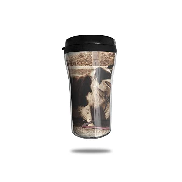 HJGKFL Black White Border Collie Ice Coffee Small Coffee Cup Carrying Hand Cup Reusable Plastic Curve Travel Cup Coffee Cup Asymmetric Men Children Teen Adult 1
