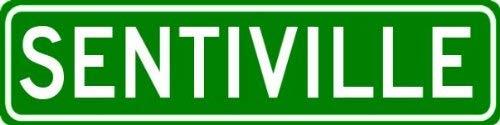 "VinMea SENTIVILLE Sign - Customized SENTI Last Name - 4""x18"" Metal Sign"