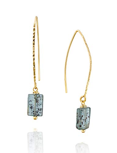 Kyanite Gemstone Dangling Long Wire Threader Earrings in 14k Gold-Filled Unique Women's ()