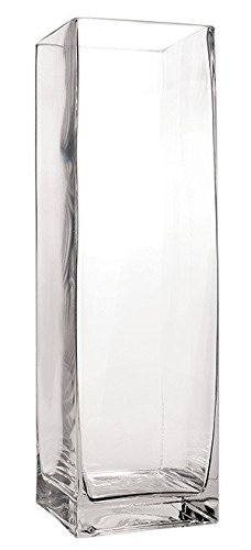 "Flower Glass Vase Decorative Centerpiece For Home or Wedding by Royal Imports - tall square clear glass rose vase (16"")"