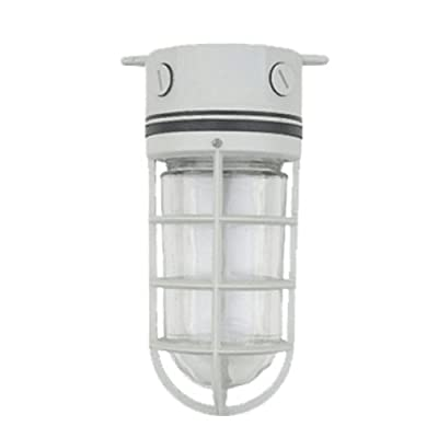 eTopLighting Guarded Hazard Outdoor Industrial Wall Mount Light Fixture with Metal Cage Bulb Protector, APLIQ313