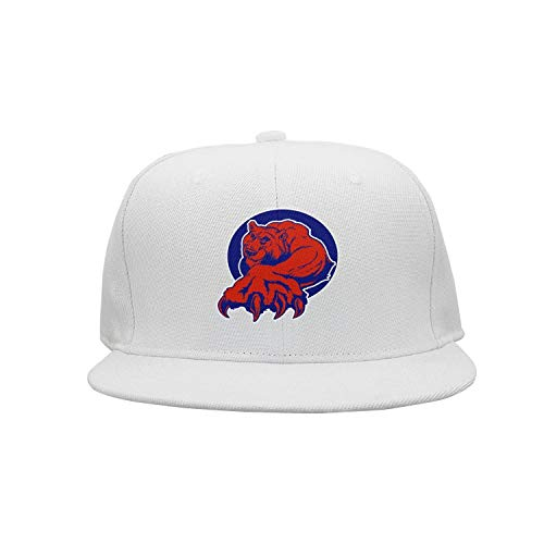 BenS Oscar Unisex Snapback Adjustable Hat Flat-Brim Baseball Caps - Chicago_Funny_Cubs_Bear