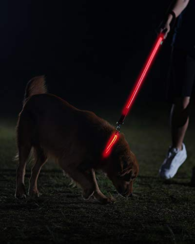 Image of LED Dog Collar - USB Rechargeable - Available in 6 Colors & 6 Sizes - Makes Your Dog Visible, Safe & Seen