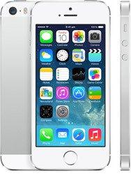 Apple iPhone 5s + OtterBox Case 1