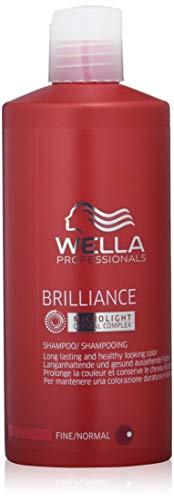 Wella 전문가 광채 샴푸, 1ce_e 팩 (1 x 500 ml)-4015600254193 (2016-11-06)