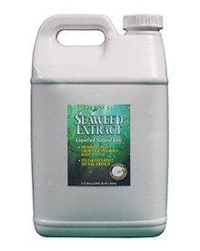 growmore seaweed extract - 9