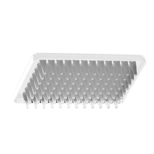 Axygen PCR-96M2-HS-C Half Skirt 96-Well x 300 microliter Amplification PCR Microplate With Single Notch, Clear PP, RNase/DNase-Free, Non-Sterile (1 Case: 10 Plates/Unit; 5 Units/Case) by Axygen