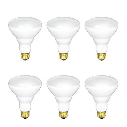 BR30 Incandescent Flood Light Bulb, 65W, 2700K Soft White, 580 Lumens, E26 Medium Base, 130V, (6 Pack)