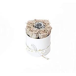 Forever Monroe's Preserved Nude and Silver Roses in a white round box, Long Lasting Luxury Roses that last a year 49