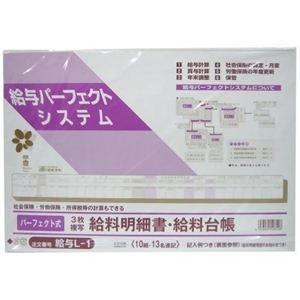 Salary L-1 / Perfect formula paycheck stub, salary ledger (japan import)