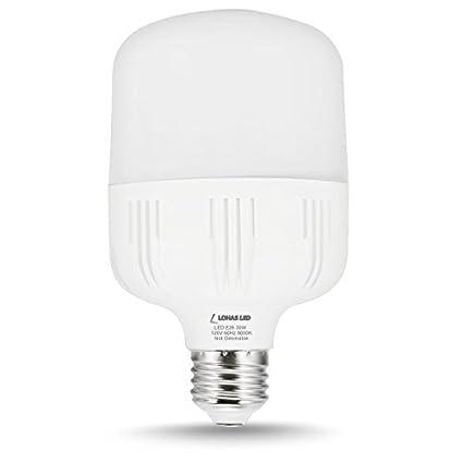 Lohas led bulb 30w commercial retrofit light bulbs 250 300 watt lohas led bulb 30w commercial retrofit light bulbs 250 300 watt equivalent t80 aloadofball Choice Image