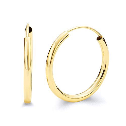 14k Yellow Gold 2mm Thickness Endless Hoop Earrings (20 x 20 mm)