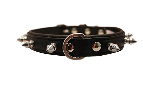 """Spiked Studded Leather Dog Collar, Padded, Double-Ply, 16"""" x 3/4"""", Black, Leather (Rotterdam Spiked) Boston Terrier, Pug"""