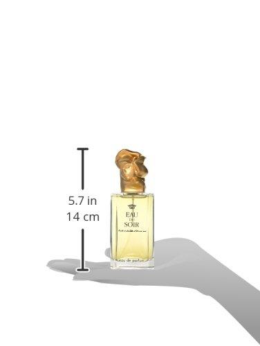 Eau Du Soir By Sisley For Women. Eau De Parfum Spray 3.3 Ounces by Sisley (Image #6)
