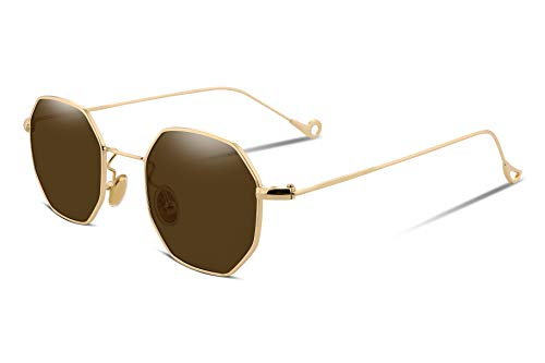 FEISEDY Hipster Polygon Sunglasses Small Metal Frame Delicate Temple Women B2254 (Gold frame brown lens, 1.69) (Retro Hipster)