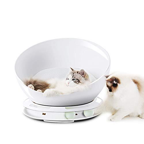 Best Cat Cat Houses & Condos