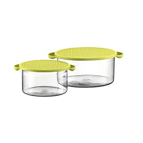 Bodum Hot Pot 2 Piece Glass Bowl Set with Green Silicone Lids Bodum Glass Bowls
