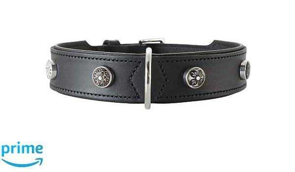 HUNTER 63823 Yuma Collar para Perros, Piel Individual ...
