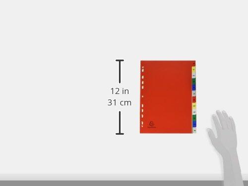 DIN A4 /Überbreite farbig sortiert Exacompta 2512E  Register aus PP 180/µ mit 12 Positionen und bedrucktem Deckblatt