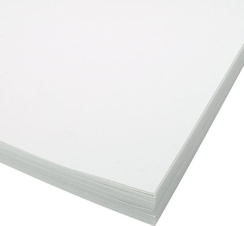 Bee Paper 100% Rag 140# Cold Press Watercolor Paper Pack, 22-Inch by 30-Inch, 25 Sheets per Pack ()