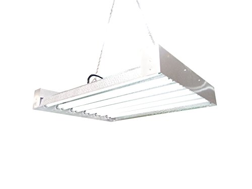 T5 HO Grow Light - 2 FT 12 Lamps - DL8212 Fluorescent Hydroponic Indoor Fixture Bloom Veg Daisy Chain with Bulbs