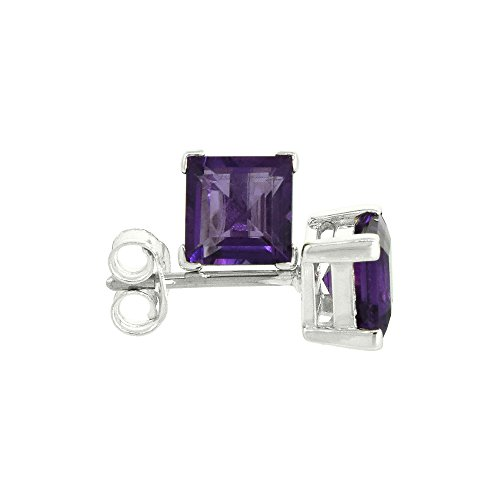 February Birthstone Amethyst Princess Silver