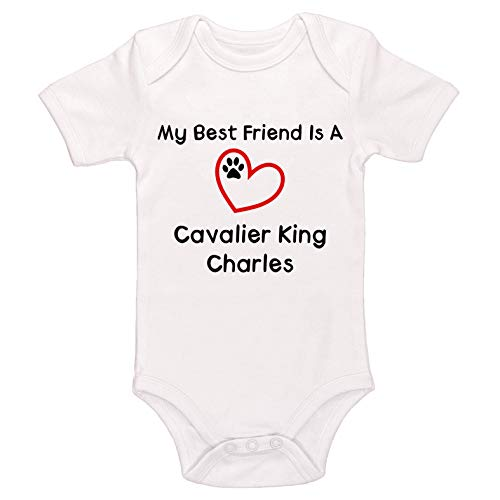 Kinacle My Best Friend is A Cavalier King Charles Baby Bodysuit (6-12 Months, White)
