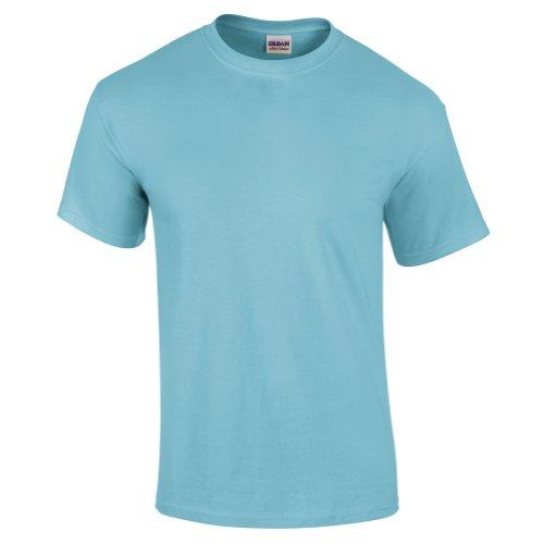 (Gildan mens Ultra Cotton 6 oz. T-Shirt(G200)-SKY-S)