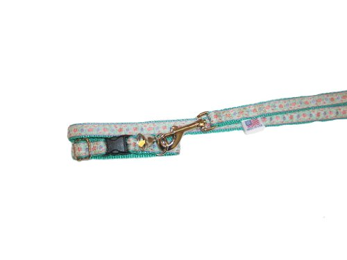 Teal Ferret Collar - Climbing Rose on Teal Adjustable Fashion Ferret Collar with Bell and Matching 4 Ft. Leash