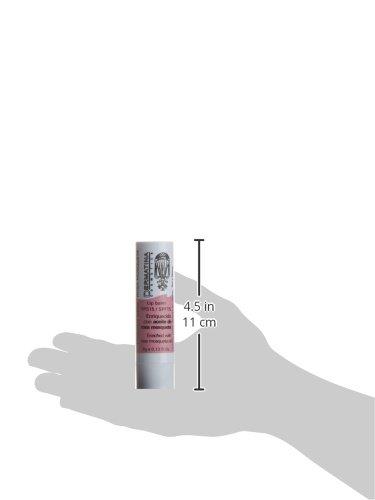 Amazon.com: Eveline enriquecido Lip visualización con aceite ...