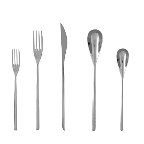 Fortessa Dragonfly 18/10 Stainless Steel Flatware 5 Piece Place Setting (Sets Dining Unique)