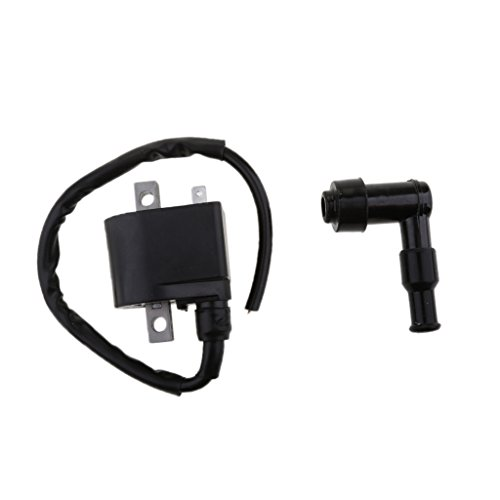 MonkeyJack Black Ignition Coil With CDI Wire Cap For Suzuki - Import It All
