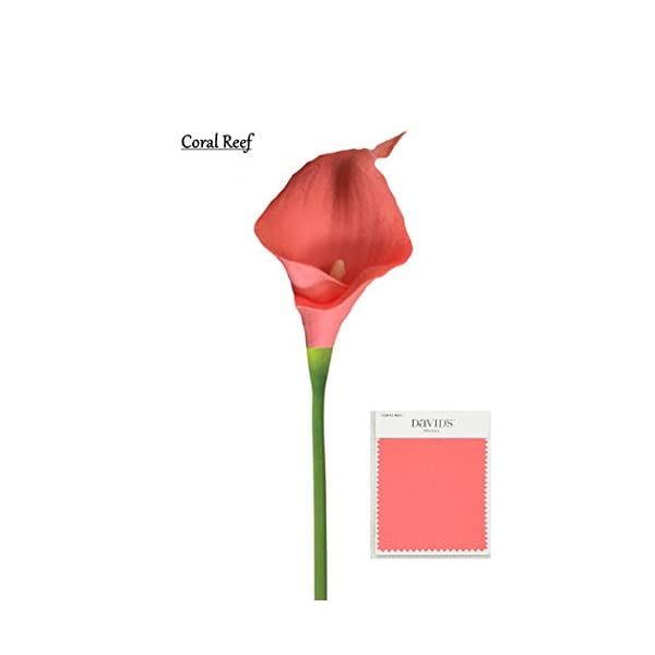 Angel Isabella 60 Stems of Fragrance Premium Keepsake Artificial Real Touch Calla Lily-Coral Reef.Small Bloom Perfect for DIY Corsage Boutonniere Bouquet …