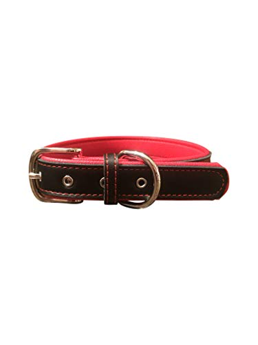 (Comfortable Soft Touch Leather Dog Collar Alloy Hardware Loop Ring for Tags & Leash Attachment (Large))