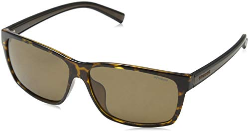 PLD Sunglasses Brown 2027 Bk S Dkbrow F Marrón Havana 11w6dq