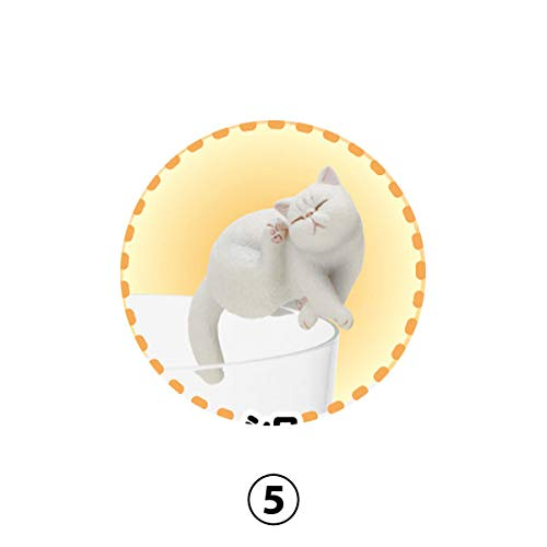Amazon Com Capsule Toy Putitto Series Exotic Shorthair Cats Mini