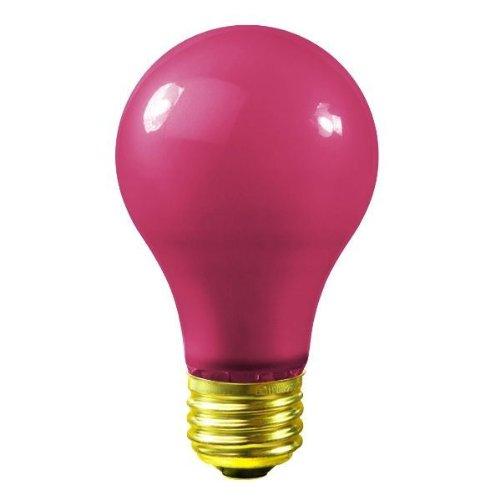Ceramic Pink A19 Bulb - Bulbrite 106640 40W Ceramic Pink A19 Bulb
