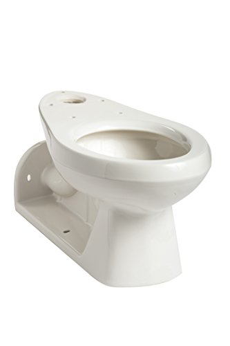 Mansfield Plumbing 149 Quantum Elongated Front Back Outlet (Toilet Bowl ONLY), White
