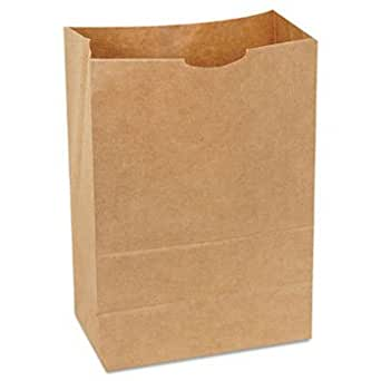 Amazon.com: General 1/6 BBL 65 # bolsa de papel, natural ...