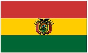 Bolivia 3x5 Flag Brand New Bolivian 3 x 5 -