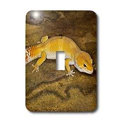 3d Rose 3dRose LLC lsp_73100_1 Leopard Gecko Morph Lizard...