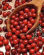 100 Plus Pre-Stratified Cranberry Seeds Free Shipping
