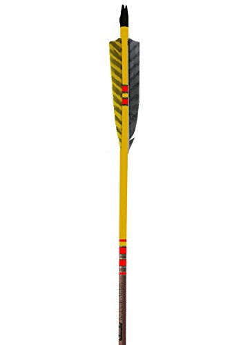 (Rose City Archery Port Orford Cedar Extreme Elite Arrows with Walnut Stain Shaft, 5