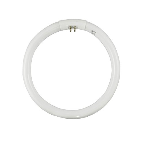 FCT5 22W D Daylight 6400K Circular Fluorescent product image