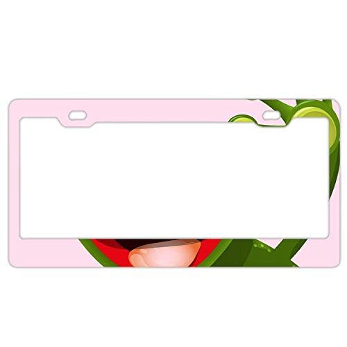 - YEX Abstract Merry Green frog1 License Plate Frame Car License Plate Covers Auto Tag Holder 6