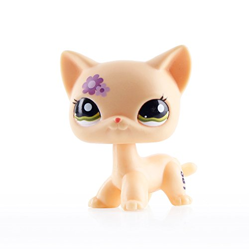 #1962 Littlest Pet Shop RARE Short Hair Cat kitty Yellow Purple Flowers LPS Toy