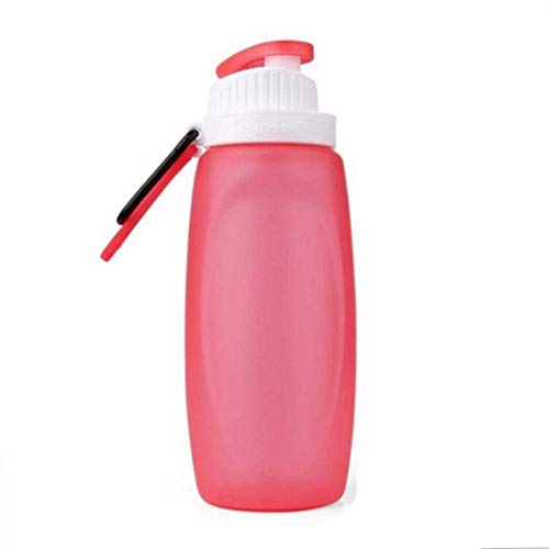 ZHRUI Water Bottle Insulated Glass Large Gallon Infuser Hot Stainless Steel...